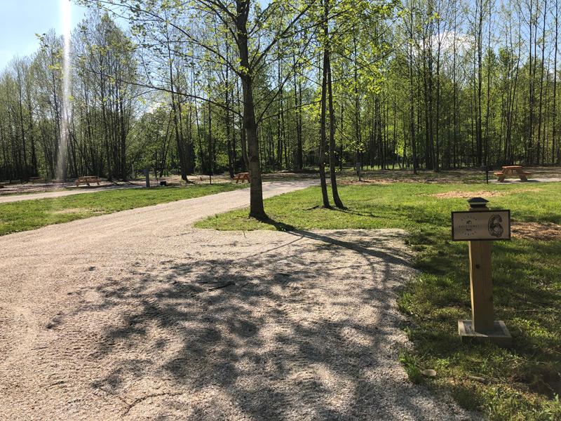 RV site near Cave Run Lake